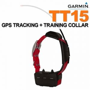 Used Garmin Alpha TT15 Collar